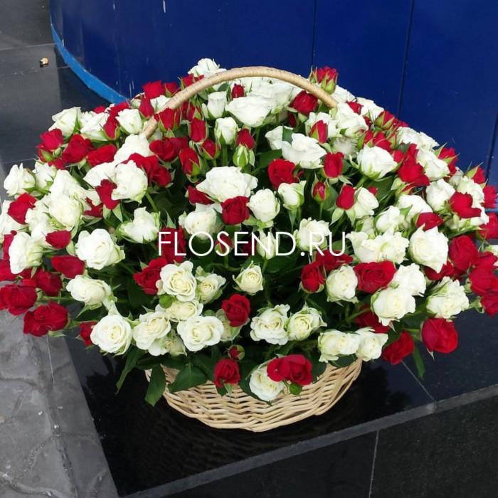 101 кустовая роза в корзине